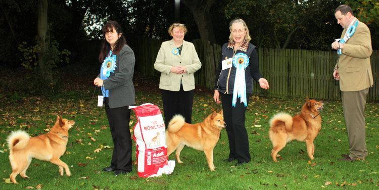 (From left) Best Bitch & RBIS Ch Toveri Tuula with Mrs Hannah Thompson, Judge Mrs Hazel Fitzgibbon, Best Dog & BIS Ch Valokki Soren with Mrs Irene Slater, Best Veteran & RBD Ch Kunniakas Kimi Possible with Mr Stuart Byrne.