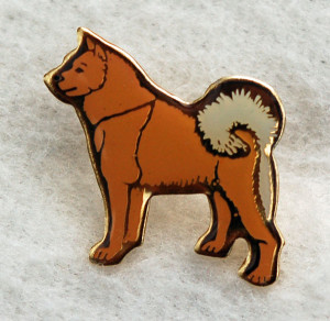 Finnish Spitz pin badge    –  £2.00