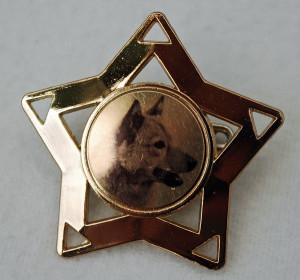 Finnish Spitz star show ring clip    –  £3.00